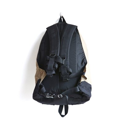 画像2: GREGORY / DAY PACK SAND